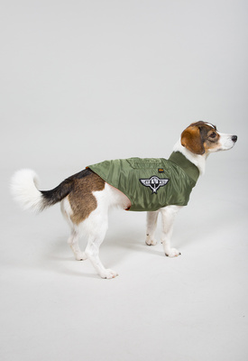 Alpha Industries Dog MA-1 Nylon Flight Jacket XL 163901/01/XL